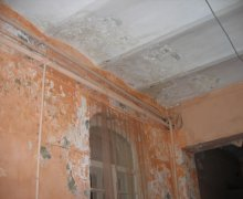Грибковое поражение стен. разрушение штукатурного слоя